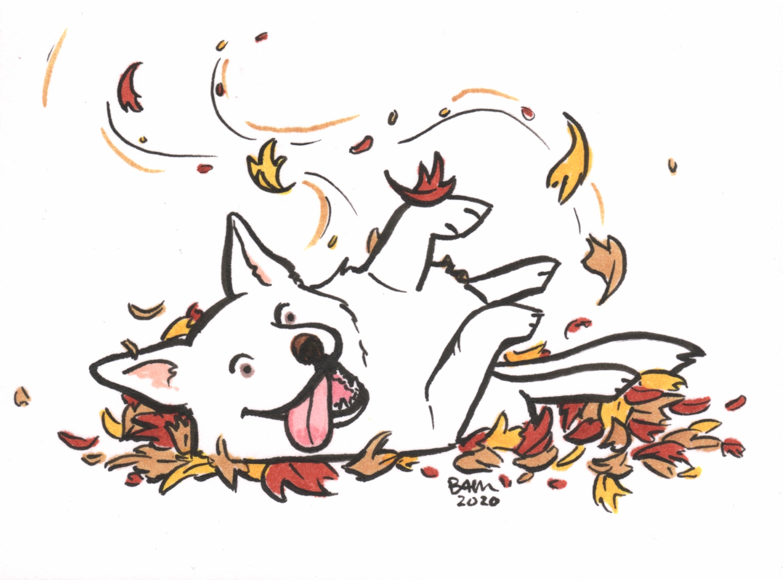 Good doggo takes a roll
