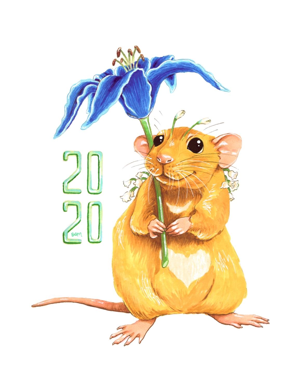 Chinese Zodiac, Year 1